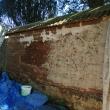 Applying Harling Coat to Cob Wall