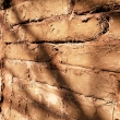 Repairing Wall with Cob Blocks